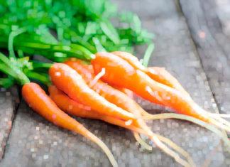 Zanahorias muy sabrosas